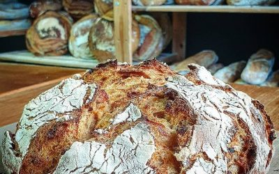 ¿Por qué utilizamos masa madre en nuestros panes?